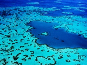 whitsunday_islands_54.jpg
